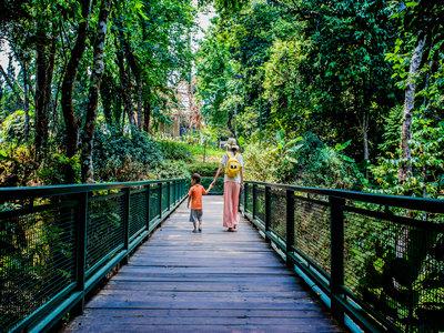 申请泰国留学签证可选加急业务吗?